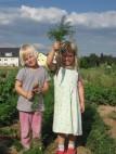 © meine ernte - Gemüsegärten